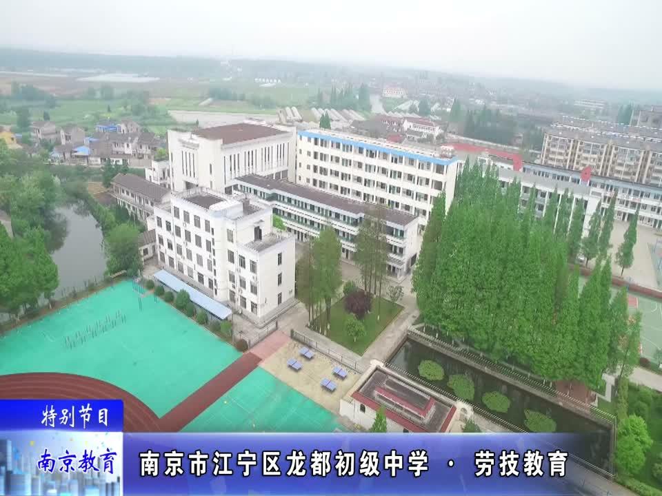 劳技教育-南京市江宁区龙都初级中学